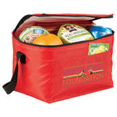 Budget 6 Can Lunch Cooler